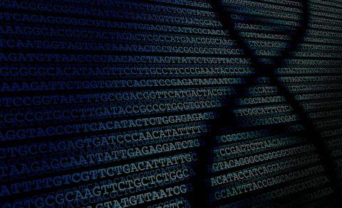 DNA (gene-based health plans)