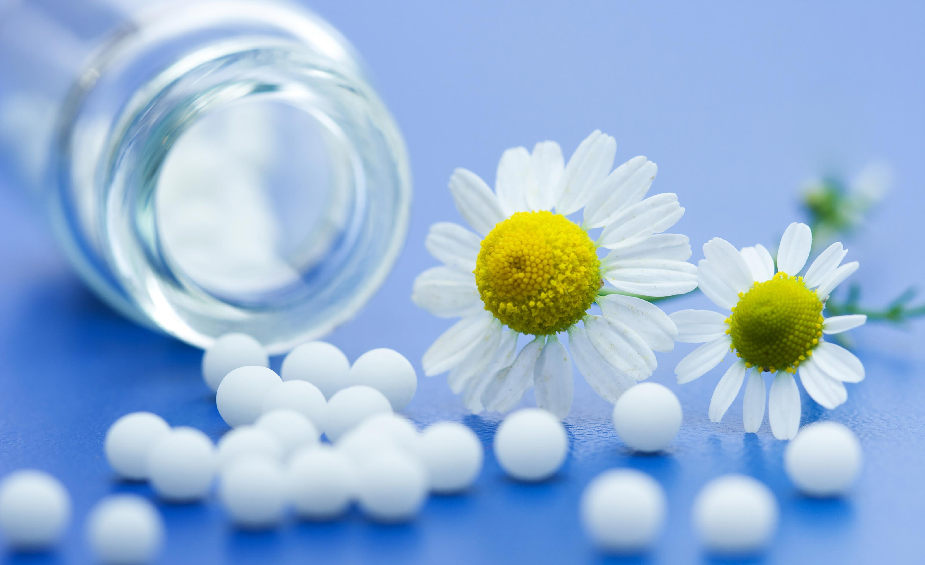 Homeopathy Integrated Medicine Institute Hk Imi Integrated Medicine Institute