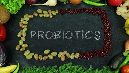 Probiotics are Necessary for Life and Health